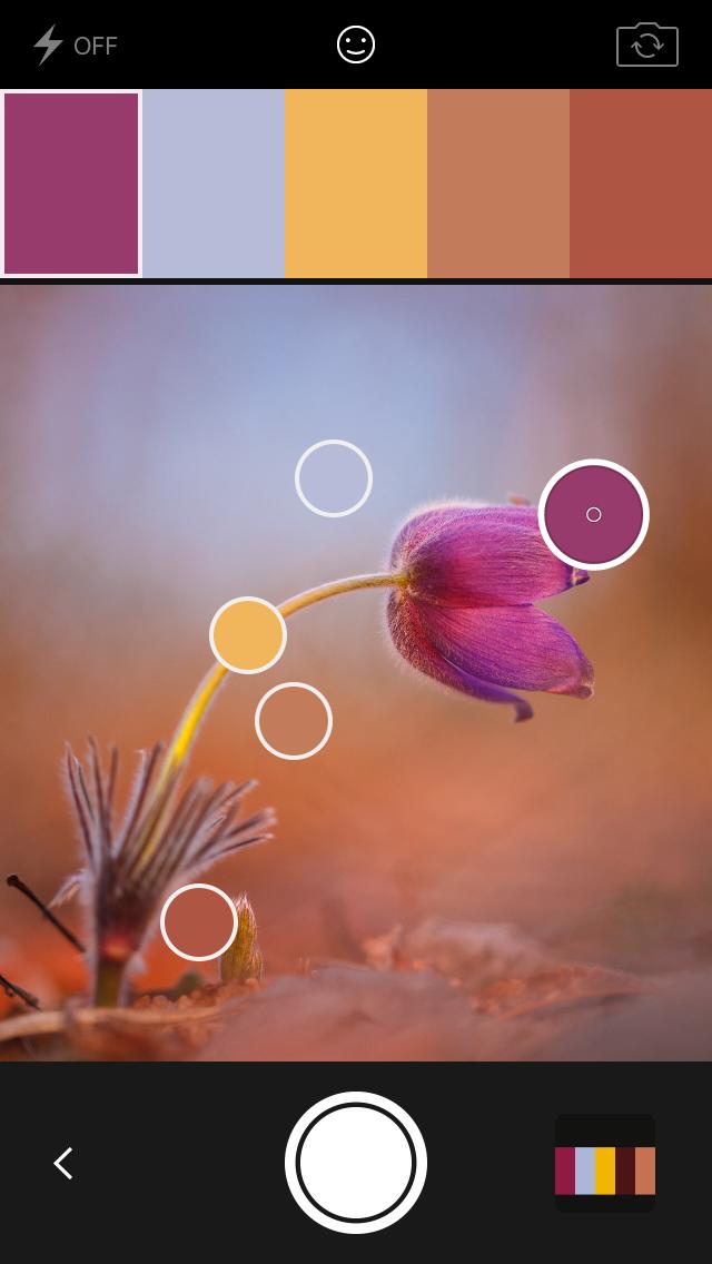 Мини-обзор мобильного приложения Adobe Capture CC