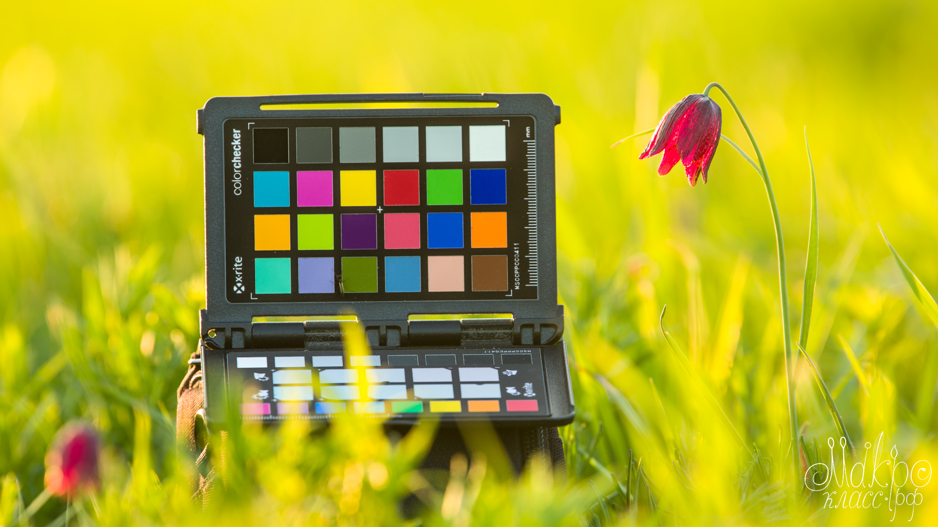 Калибровочная мишень ColorChecker и её применение