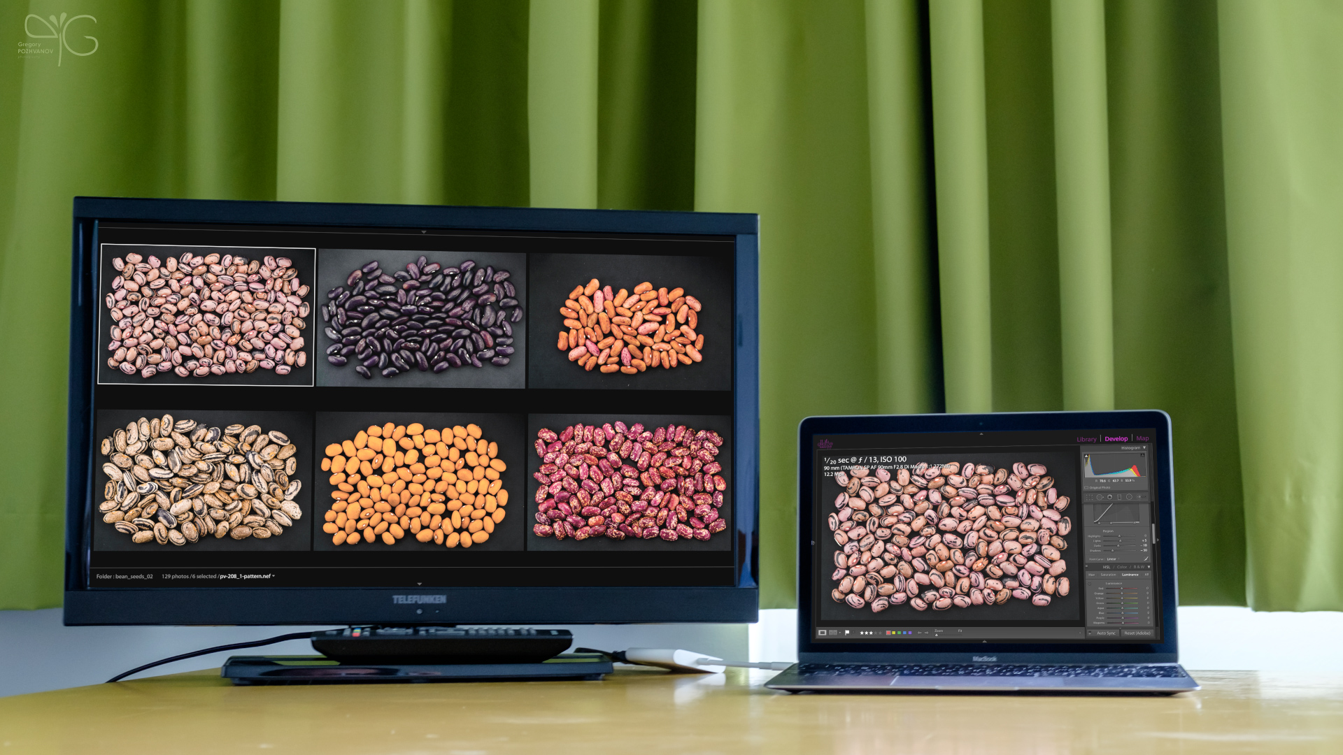 Color profile for Telefunken TV in MPI Guesthouse Golm