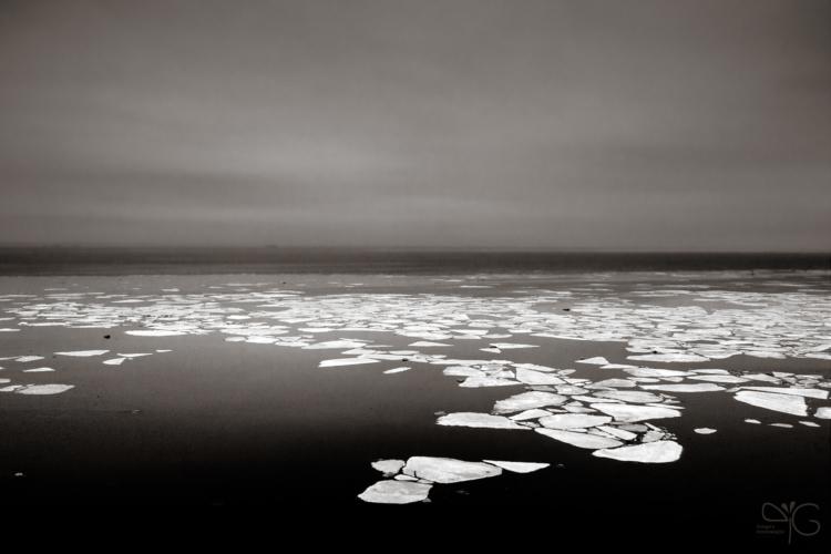 Финский залив, апрель 2009. Ледоход