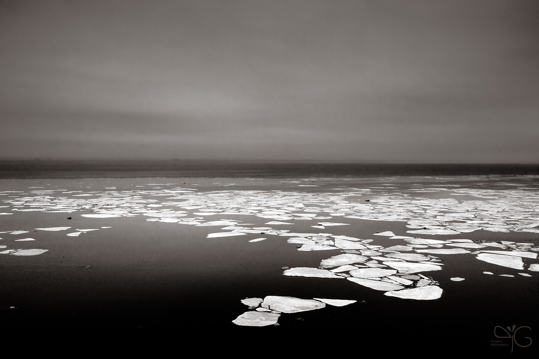 Финский залив. Ледоход. Апрель 2009.