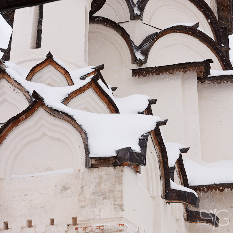 В Спасо-Ефимиевом монастыре