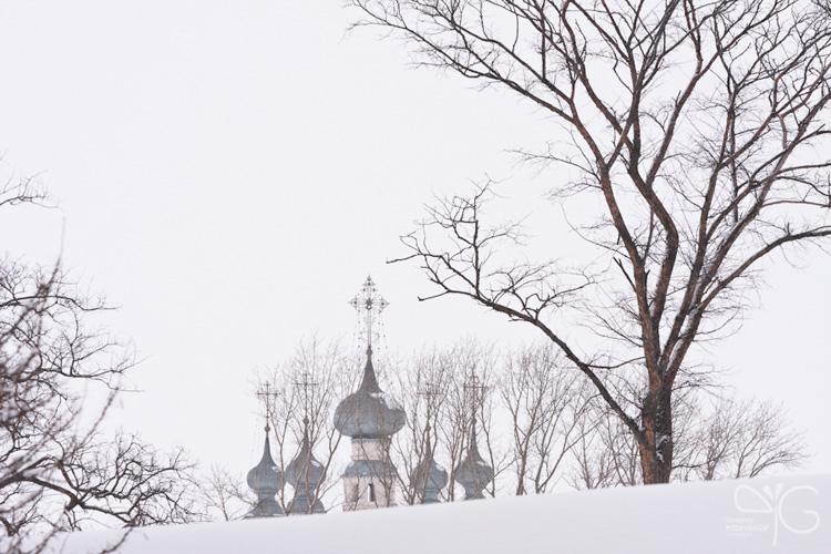 Вид на Петропавловскую церковь Покровского монастыря (действующий) в Суздале